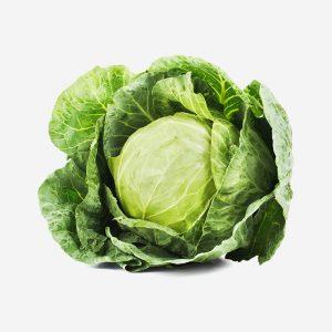 The-versatile-Cabbage
