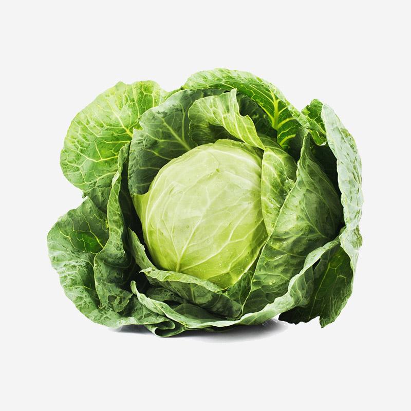 The-versatile-Cabbage